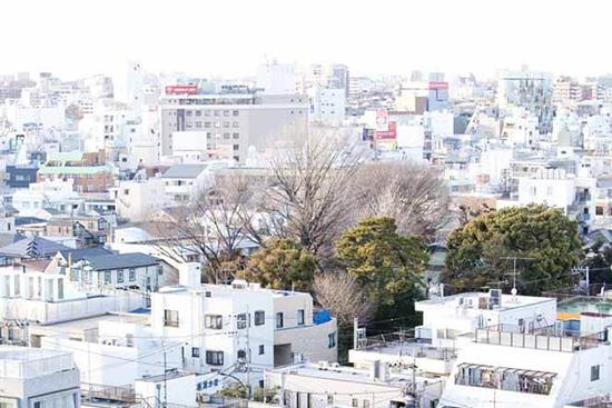 世田谷区ってどんな街?